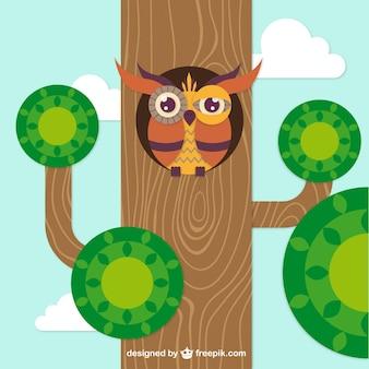 Gufo in un albero