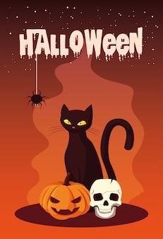 Halloween con gatto e icone