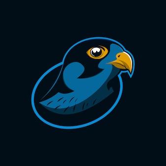 Hawk eagle testa illustrazione vettoriale
