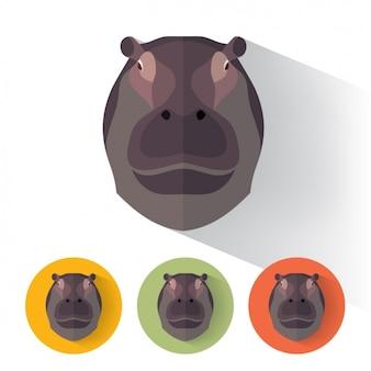 Hippopotamus disegna collezione