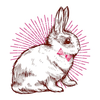 Hipster carino coniglio. coniglietto con il papillon.