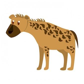 Hyena animale selvatico
