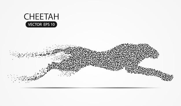 I punti del punto del ghepardo bilancano su fondo grigio con gli effetti di colore nero dei punti.