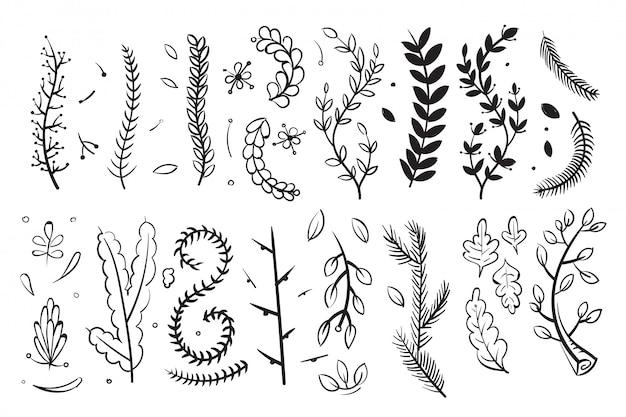 I rami decorativi disegnati a mano con le foglie ed i fiori scarabocchiano l'insieme di elementi floreale di vettore