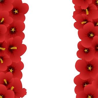 Ibisco rosso - rosa di sharon border