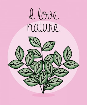 Icona della natura del giardino delle piante delle foglie