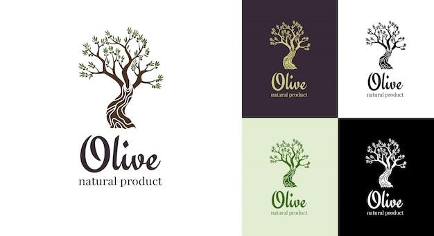 Icona isolata di olivo elegante. concetto di design del logo albero. illustrazione della siluetta di olivo. emblema di pianta di olio d'oliva naturale