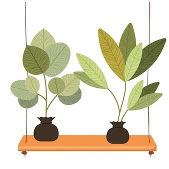 Icona isolata di piante di scaffale