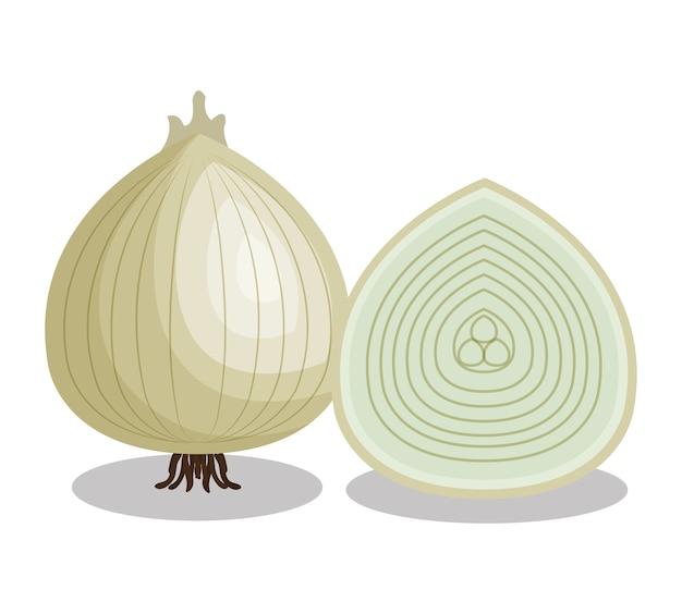 Icona isolata vegetale di cipolla fresca