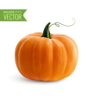 Icona realistica della zucca arancio su bianco per la decorazione halloween o le vacanze di giorno di ringraziamento
