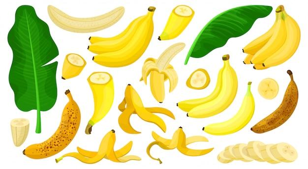 Icona stabilita del fumetto isolata banana. illustrazione frutta tropicale cartone animato