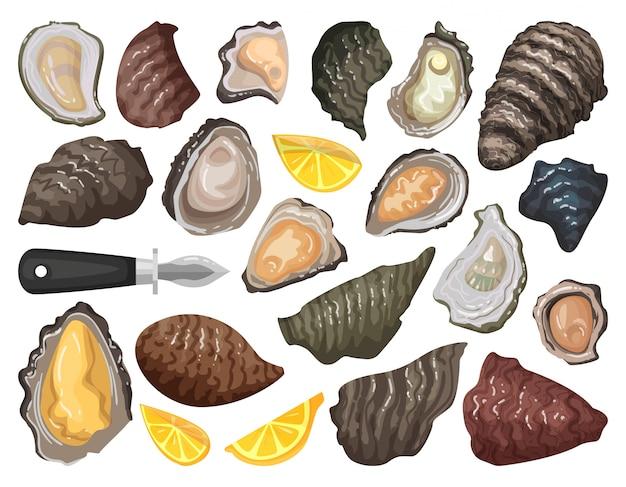 Icona stabilita del fumetto isolata ostrica. icona stabilita del fumetto cibo per crostacei.
