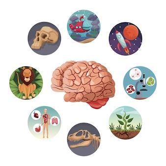 Icone circolari di colore con evoluzione del mondo dell'immagine all'interno del cervello