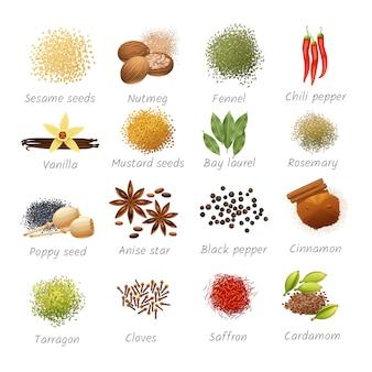 Icone con titoli di ingredienti alimentari piccanti e spezie fragranti realistiche