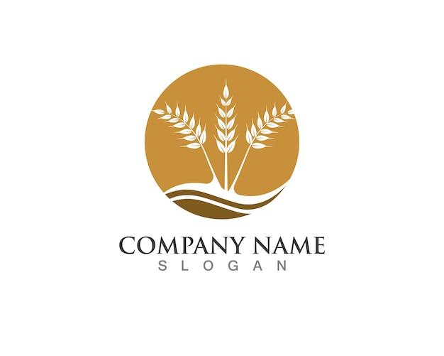 Icone del modello logo e simboli del pasto di cibo di riso