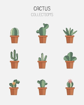 Icone di cactus in uno stile piatto su uno sfondo bianco