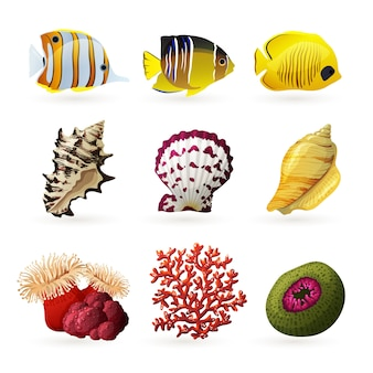Icone di fauna marina