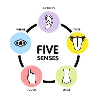 Icone di linea di cinque sensi.