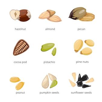 Icone di semi e noci in stile cartone animato