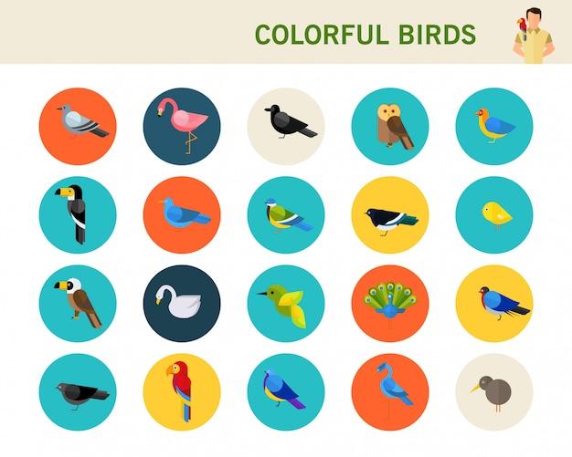Icone piane di concetto di uccelli colorati.