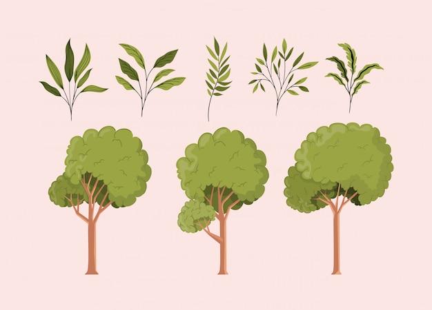 Icone verdi dell'insieme delle foglie e degli alberi verdi