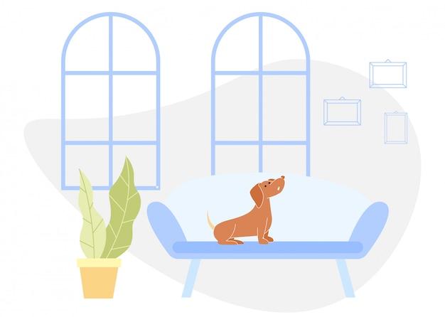 Il cane marrone si siede sul sofà blu in appartamento. vettore.