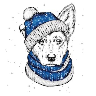 Il cucciolo con il cappello di natale. cane di babbo natale.