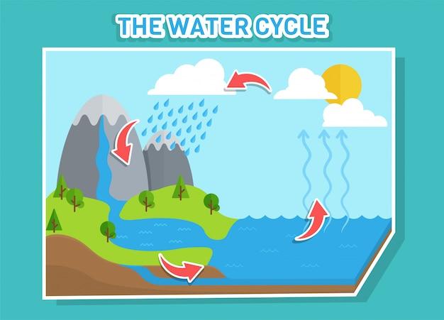 Il diagramma del ciclo dell'acqua mostra il ciclo dell'acqua dalle gocce d'acqua alle gocce di pioggia.