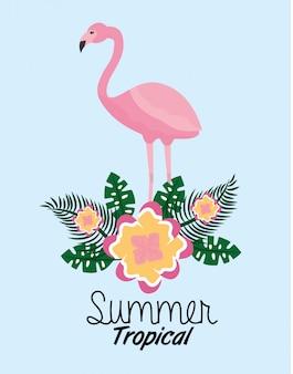 Il fiore sveglio di flamengo tropicale dell'estate lascia il fogliame esotico