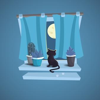 Il gatto si siede sul davanzale della finestra. notte