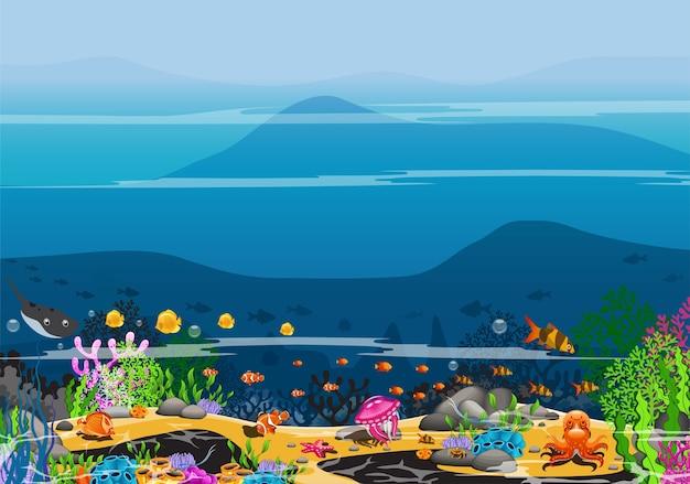 Il mondo sottomarino e le creature nell'oceano. foto del mare