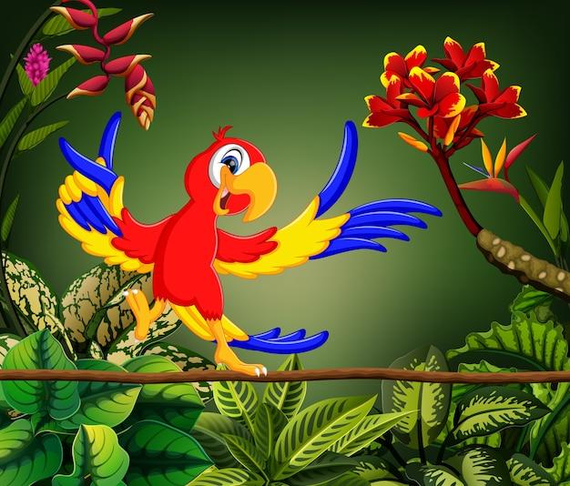 Il pappagallo sveglio canta la canzone nella foresta