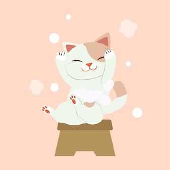 Il personaggio di cute cat lavaggio dei capelli. il gatto sorride e sembra così felice. il gatto che lava i capelli con un sacco di bolle