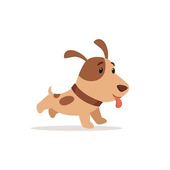 Il piccolo cucciolo sorride e corre