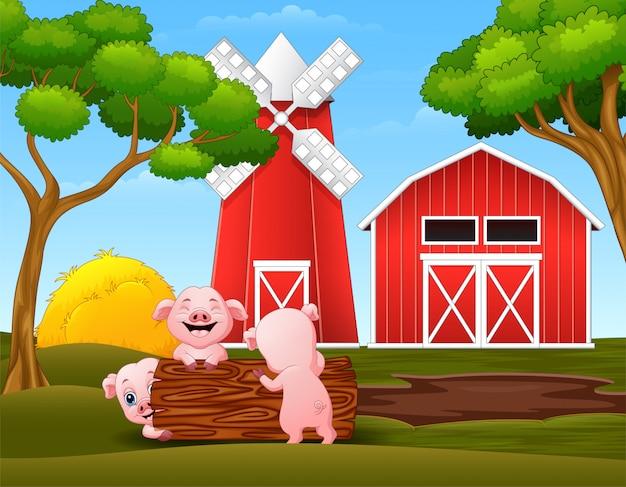 Il piccolo maiale felice tre che gioca collega nell'azienda agricola