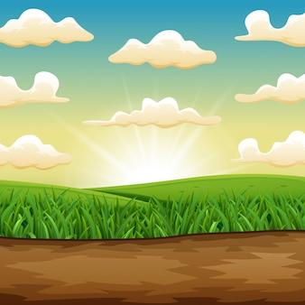 Il sole che sorge o tramonta su un bellissimo campo verde di erba