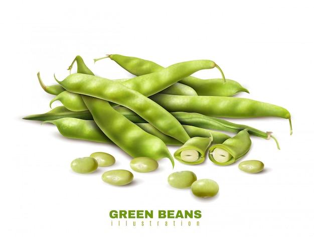 Il taglio fresco dei fagioli organici verdi e gli interi baccelli si chiudono sull'illustrazione sana di vettore della pubblicità dell'alimento di immagine realistica