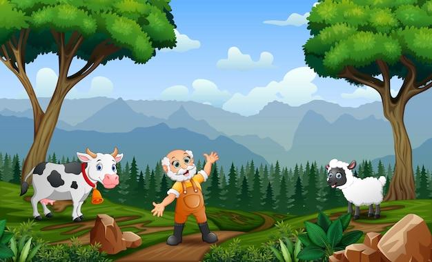 Il vecchio contadino che raduna bestiame e pecore nel campo