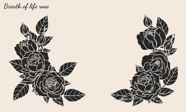 Il vettore dell'ornamento della rosa ha impostato a mano il disegno