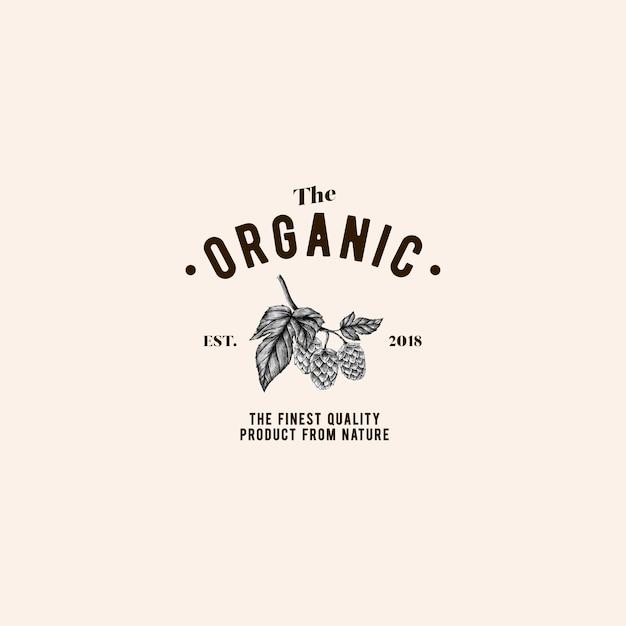 Il vettore di progettazione logo organico