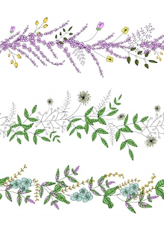 Il vettore ha messo con le spazzole del modello della pianta di giardino con lavanda stilizzata
