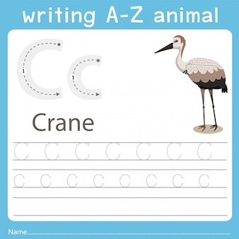 Illustrator che scrive az animal of crane