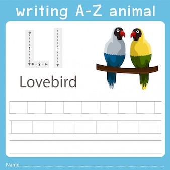 Illustrator che scrive az animal of lovebird