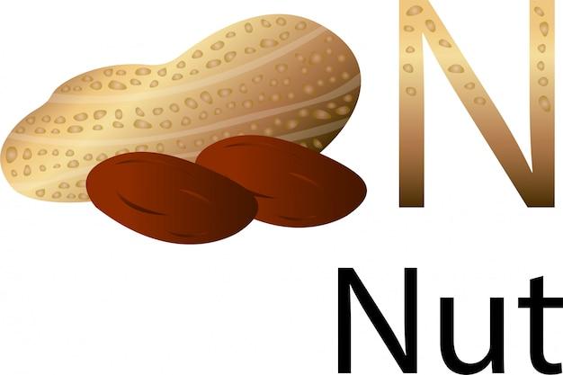 Illustrator n font with nut