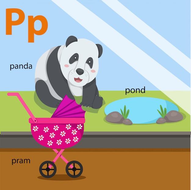 Illustrator of az set for p isolated