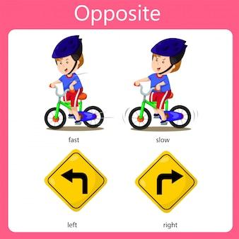 Illustrator opposite set veloce lento a sinistra e destra