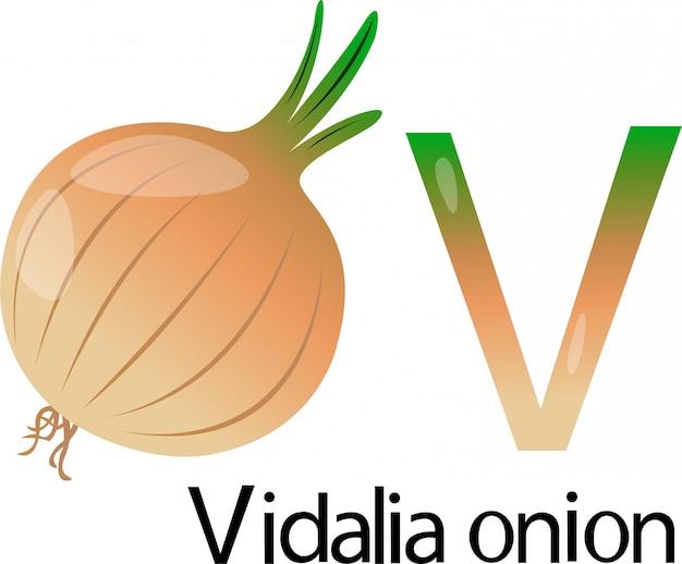 Illustrator v font con vi dalia onion