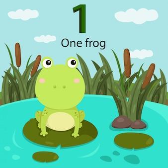 Illustratore del numero uno con rana