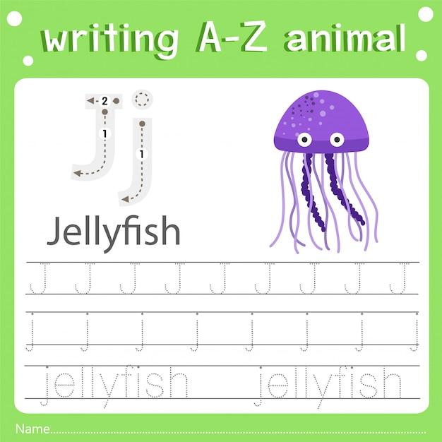 Illustratore della scrittura di az animal j jellyfish