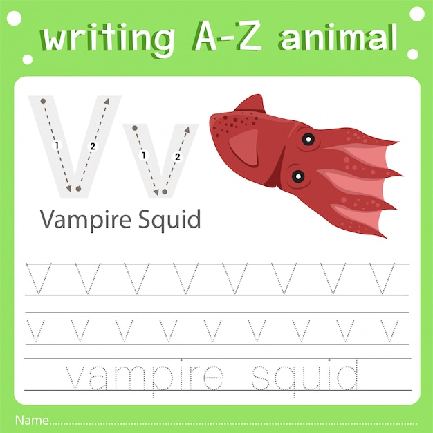Illustratore della scrittura di az animali v calamari vampiro